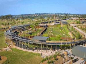 Sydney-Zoo-Lion-Enclosure-Paintwork